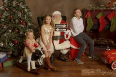 Bothell-santa-pictures-portraits (11)
