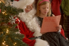 Bothell-santa-pictures-portraits (17)
