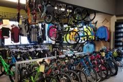 bothell-ski-bike-lots-kenmore-washington