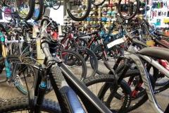 bothell-ski-bike-lots-of-bikes-kenmore-washington