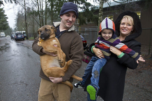Bothell Blog: Canine Christmas in Bothell