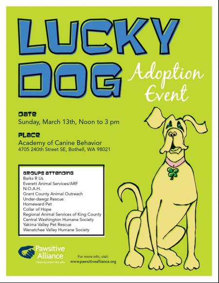 Lucky Dog Adoption Event in Bothell Washington