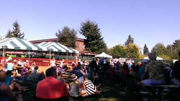 Bothell Blues Festival 2013 crowds