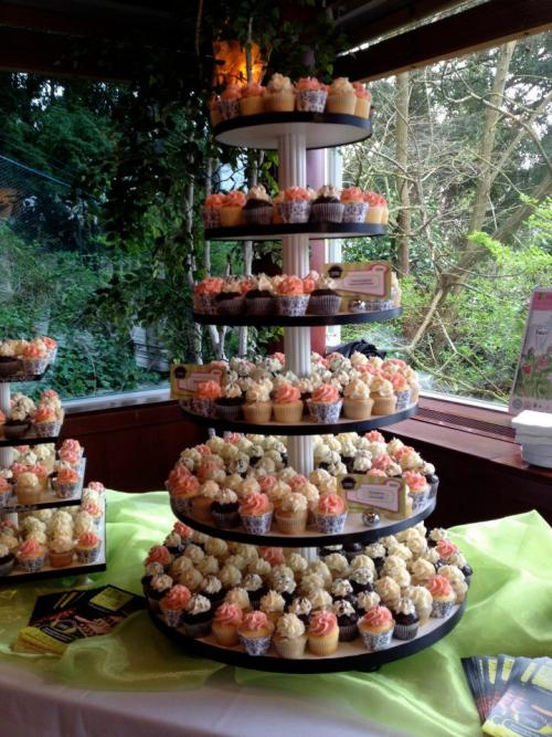 2015 Cupcake Camp Seattle in Bothell Washington